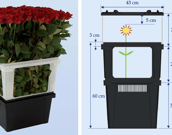 Контейнер Valencia для цветов